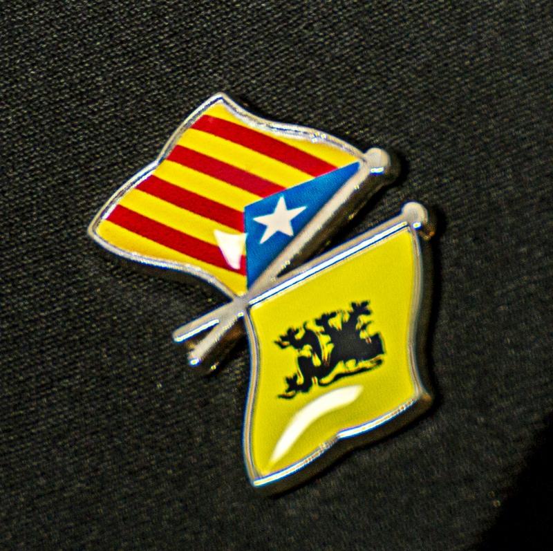 Pin Vlaanderen-Catalonië