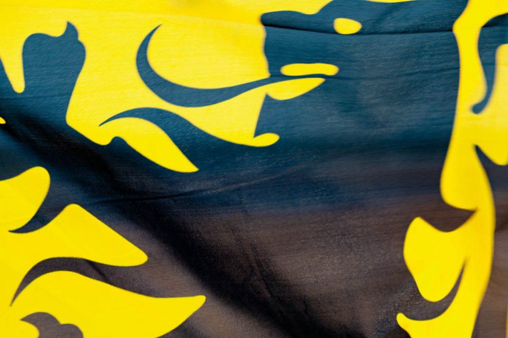 Politieke meerderheid voor betaalde Vlaamse feestdag